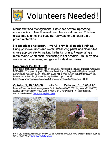 2020 Seed Harvest Volunteer Flyer1024_1